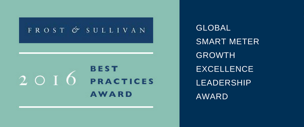 global-smart-meter-growth-excellence-leadership-award